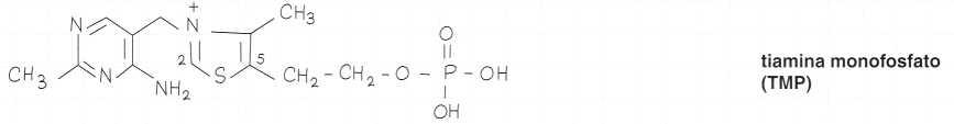 Vitamina B1 o Tiamina: formula di struttura 2