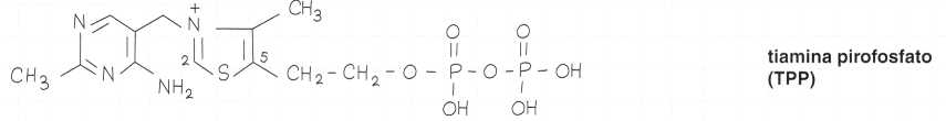 Vitamina B1 o Tiamina: formula di struttura 3