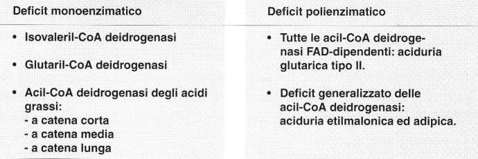 Vitamina B2 o Riboflavina: deficit
