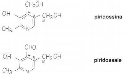 Vitamina B6 o Piridossina: formule di struttura