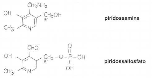 Vitamina B6 o Piridossina: formule di struttura 2