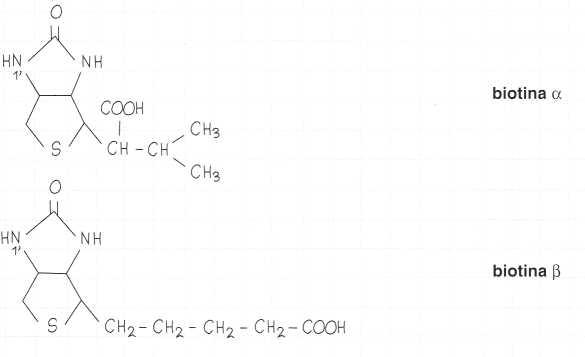 Vitamina B8 o Biotina: formule di struttura
