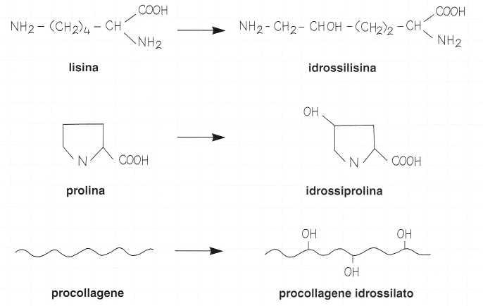 Vitamina C (Acido Ascorbico): reazione 6