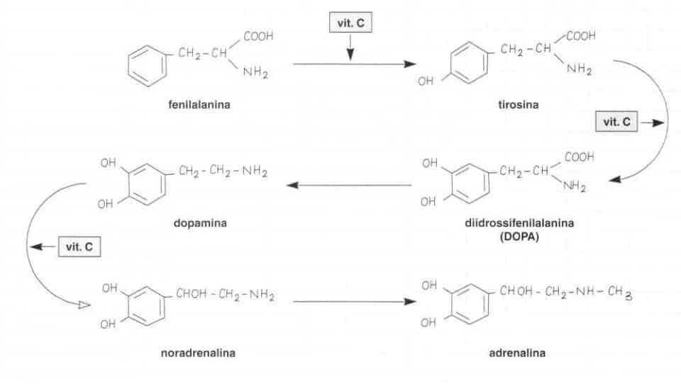 Vitamina C (Acido Ascorbico): reazione 9