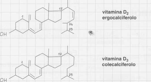 Vitamina D (Calciferolo): formule di struttura