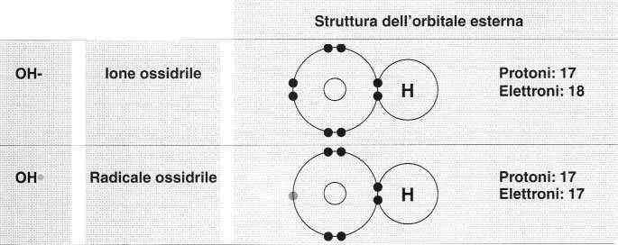 Vitamina E (Tocoferolo): struttura ione ossidrile