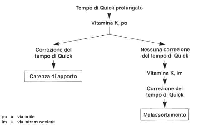 Vitamina K (Fillochinone): terapia della carenza