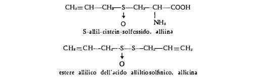 aglio formule chimiche alliina