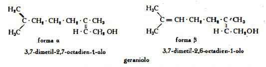 coriandolo Figura 2