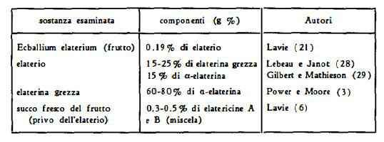 elaterio Figura 3