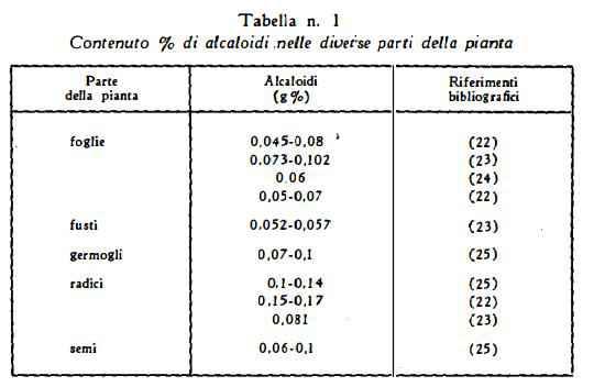 giusquiamo Figura 5