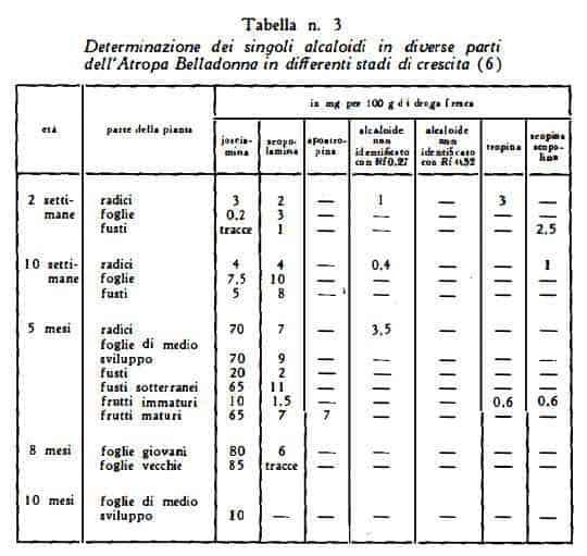 giusquiamo Figura 8