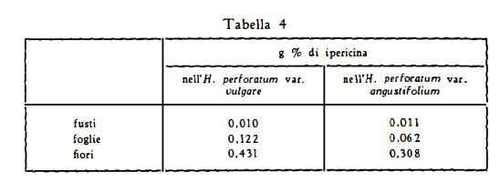iperico Figura 7