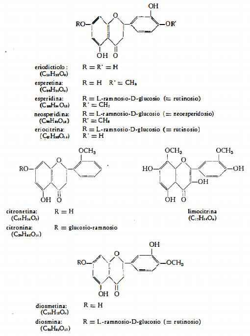 limone Figura 9