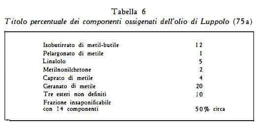 luppolo Figura 5
