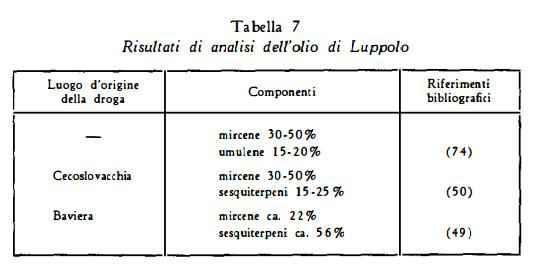 luppolo Figura 6