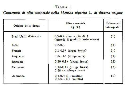 menta Figura 1