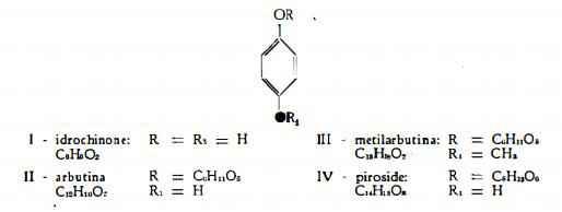 mirtillorosso Figura 1