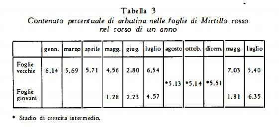 mirtillorosso Figura 3