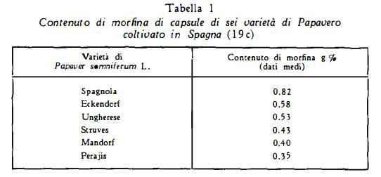 papavero Figura 1