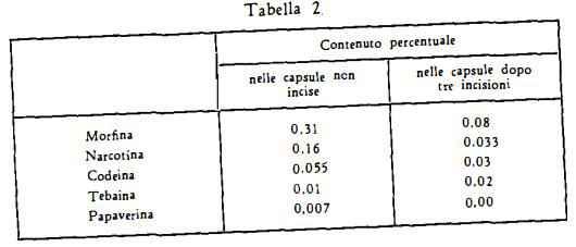 papavero Figura 2