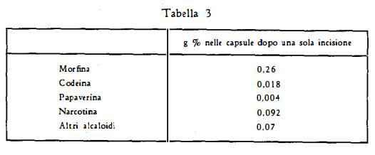 papavero Figura 3
