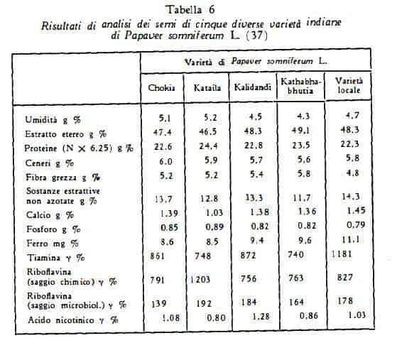 papavero Figura 6