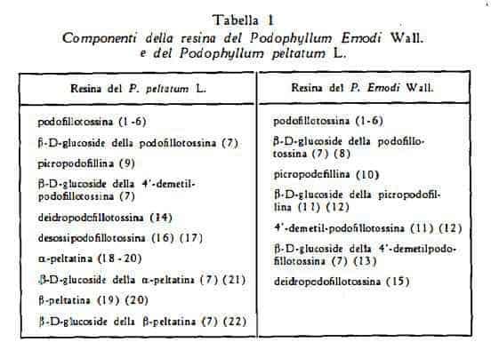 podofillo Figura 9