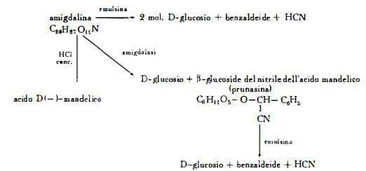 prugne Figura 4