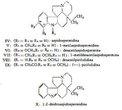 quebraco Figura 4