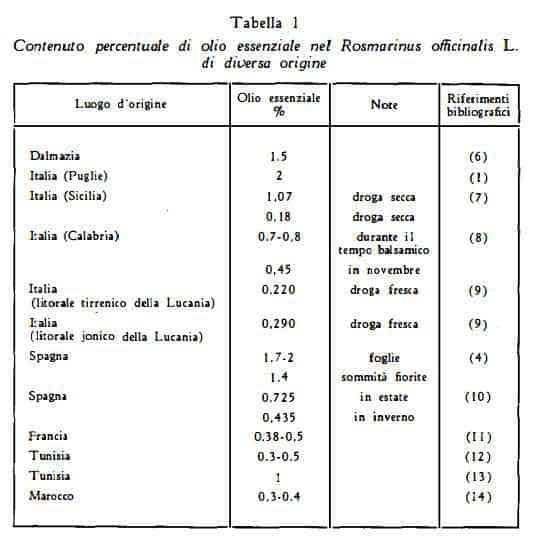 rosmarino Figura 1