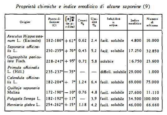 saponaria Figura 2