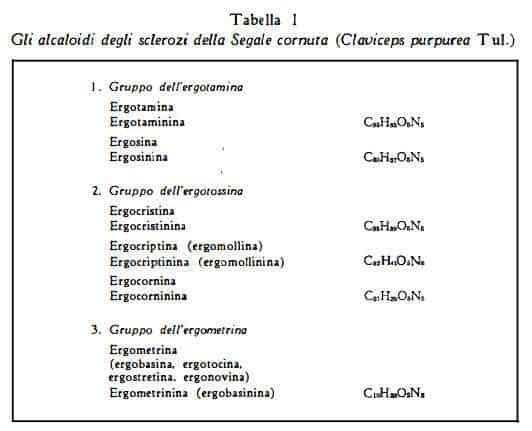 segale Figura 1