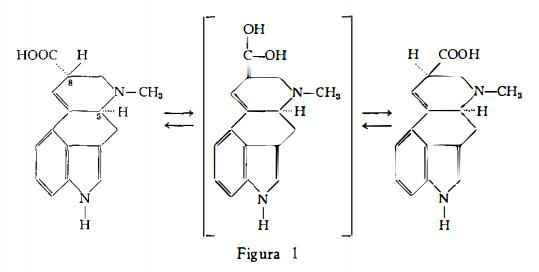 segale Figura 3