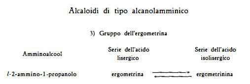 segale Figura 6