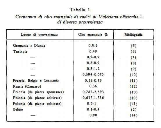 valeriana Figura 1