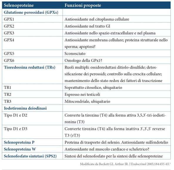 Selenio: selenoproteine